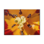 Red and Yellow Tulip Flower Cases For iPad Mini