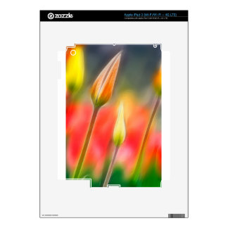 Red and Yellow Tulip Sketch Skin For iPad 3