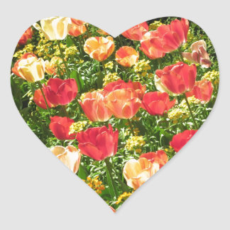 Red and Yellow Tulips Heart Sticker