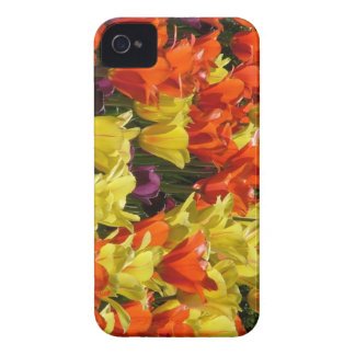 Red and Yellow Tulips iPhone 4 Case