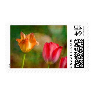 Red and yellow tulips on textured background postage