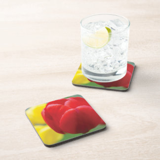 Red and Yellow Tulips Photograph Coaster