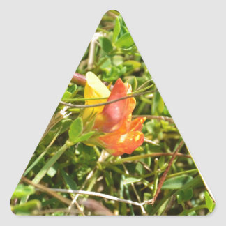 Red and Yellow Wild Flower Triangle Sticker