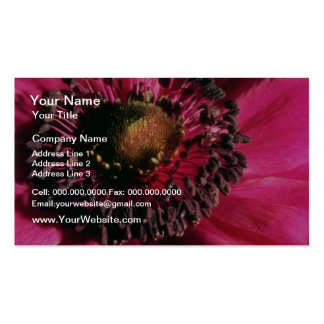 Red Anemone flowers Business Card Template