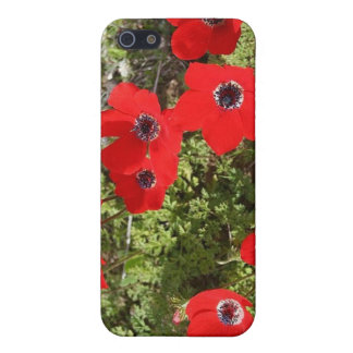Red Anemone of Adonis iPhone SE/5/5s Cover