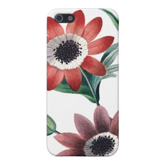 Red anemones vintage illustration cover for iPhone SE/5/5s