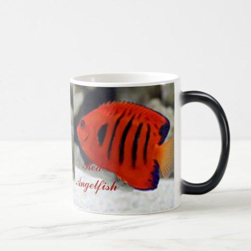 Red Angel Fish Morphing Mug