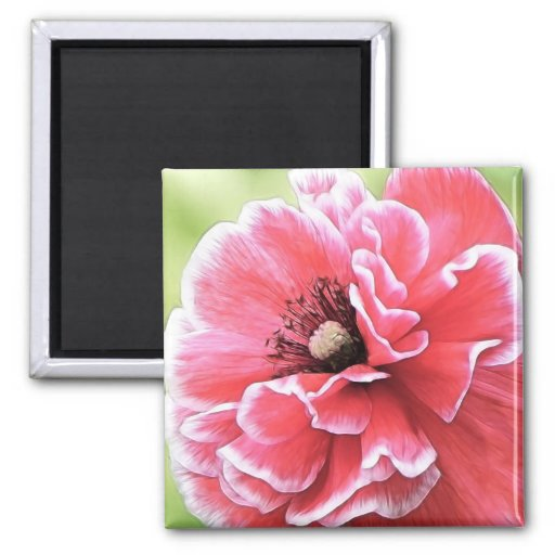 Red Angel's Choir Poppy 2 Inch Square Magnet