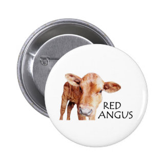 Red Angus Pinback Buttons