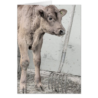 Red Angus Calf and Pitchfork Card