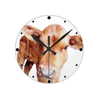 Red Angus Calf Animal Photograph Round Clock