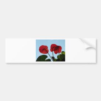 Red Anthurium Flowers Bumper Stickers
