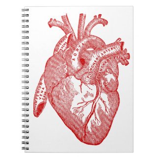 Red Antique Anatomical Heart Spiral Note Books