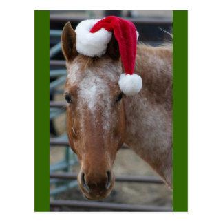 Red Appaloosa with Santa Hat Postcard