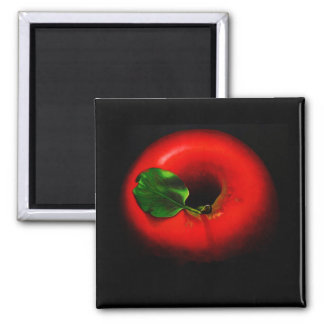 . Red Apple 2 Inch Square Magnet