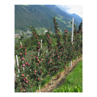 Red apple trees on a background of mountains letterhead