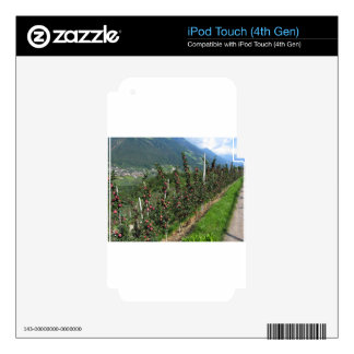 Red apple trees on a background of mountains decals for iPod touch 4G