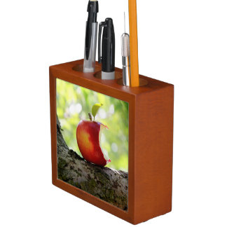 Red Apple With a Bite Out Pencil Holder