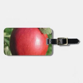 Red Apple with a Leaf Tag For Luggage