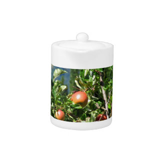 Red apples on tree branches teapot
