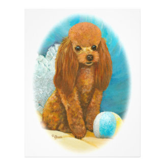 Red Apricot Poodle with Ball Flyer