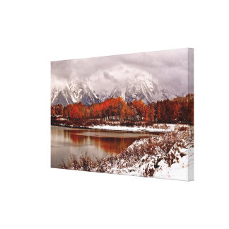 Red aspens reflections after first winter storm gallery wrapped canvas