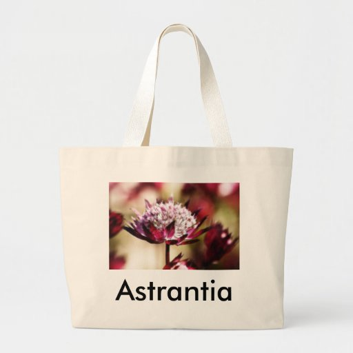 Red Astrantia Canvas Bags