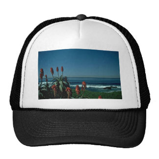 Red At The Sea Hats