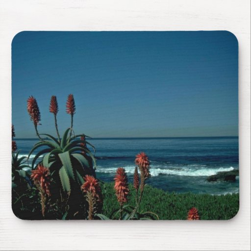 Red At The Sea Mouse Pad