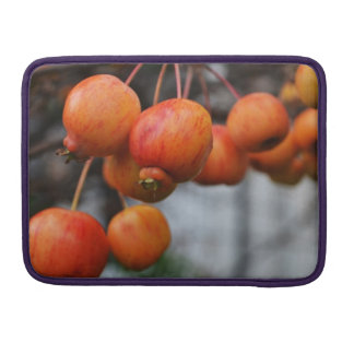 Red Autumn Apples Sleeve For MacBooks