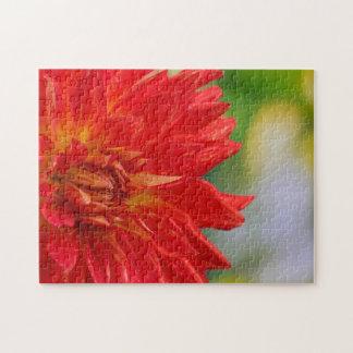 Red autumn dahlia flower in the garden jigsaw puzzles