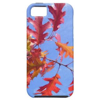 RED AUTUMN iPhone SE/5/5s CASE