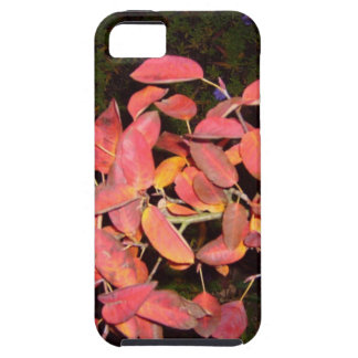 RED AUTUMN LEAVES BRANCH DARK iPhone SE/5/5s CASE