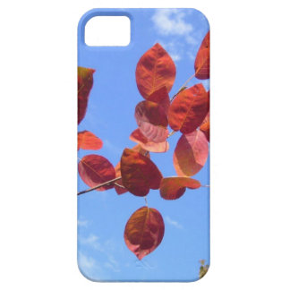 RED AUTUMN LEAVES BRANCH IN HAND iPhone SE/5/5s CASE