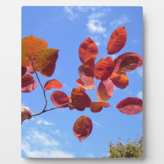RED AUTUMN LEAVES BRANCH IN HAND PLAQUE