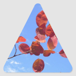 RED AUTUMN LEAVES BRANCH IN HAND TRIANGLE STICKER