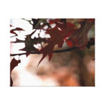 Red Autumn Leaves Canvas Stretched Canvas Print