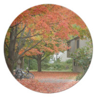 Red Autumn Leaves Falling Melamine Plate