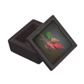 Red Autumn Leaves Floating Premium Keepsake Box