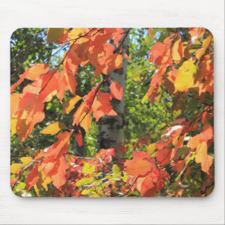 Red Autumn Leaves Mouse Pad