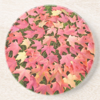 Red Autumn Leaves sandstone Coasters
