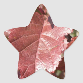 RED AUTUMN LEAVES STAR STICKER