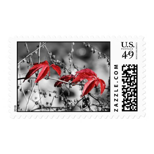 Red autumn postage stamp