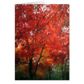 Red Autumn Tree Card