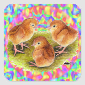 Red  Baby Chicks Square Stickers