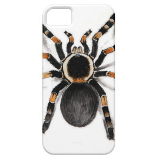 Red Banded Tarantula Spider iPhone SE/5/5s Case