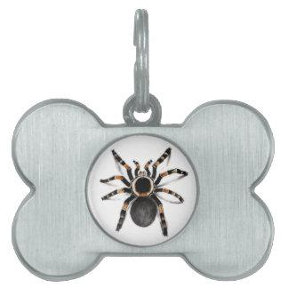 Red Banded Tarantula Spider Pet Name Tag