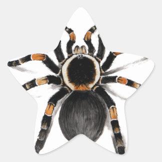 Red Banded Tarantula Spider Star Sticker
