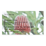 Red Banksia flower Business Card Templates