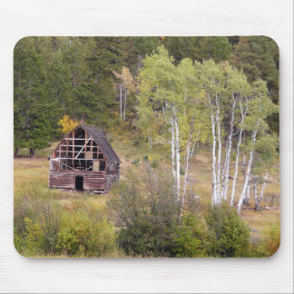Red Barn and Birch Trees Mouse Pad